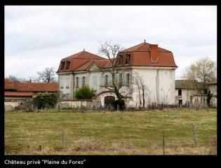 Chateau privé - Plaine du Forez